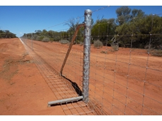 Southern Wire fencing solutions are helping Australian farmers eliminate the risk of livestock and pasture loss due to increasing pest populations