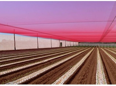 Permanent netting structures available from Southwest Crop Protection