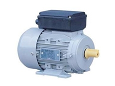 Single phase AC electric motor