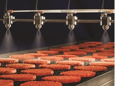 PulsaJet - Nozzles Applying Antimicrobial onto Beef Patties