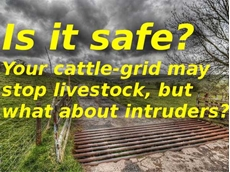 Cattle grids may not prevent crime on rural properties