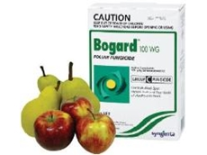 Bogard fungicide available from Syngenta