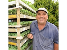 A new insecticide will make life much easier for vegetable growers like Neal Dionysius of Sutton Farms, Gatton