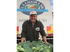 Werribee South vegetable grower, Michael Berton