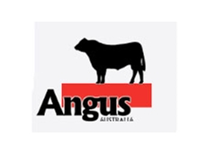 The Angus Society of Australia