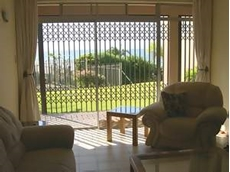 Aluminium trellis security door