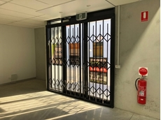ATDC's heavy duty S06 trellis security doors and shutters at a Flower Park unit