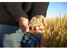 Ricegrowers' Association of Australia Inc. (RGA)