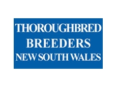 Thoroughbred Breeders New South Wales