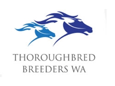Thoroughbred Breeders Western Australia