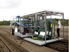 High Speed Automatic Transplanter