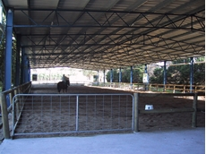 Galvanised Horse Riding Arenas