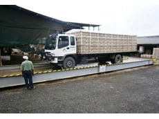 The new truck weighbridge is used to weigh incoming chickens and animal feeds, as well as outgoing deliveries