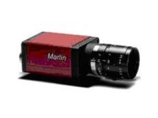 AVT's Marlin camera.