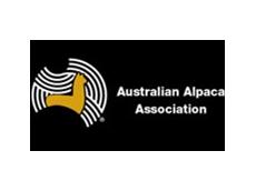 Victorian Western Region Of The Australian Alpaca