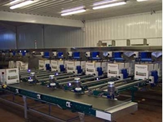 Endoline's fully automated case erecting and sealing line