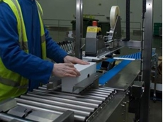 Endoline's semi-automatic case erector is capable of dealing with an array of different case sizes