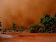 Recent dust storms caused the massive loss of valuable top soil throughout affected areas