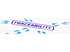 5 ways to achieve 100% traceability through the supply chain
